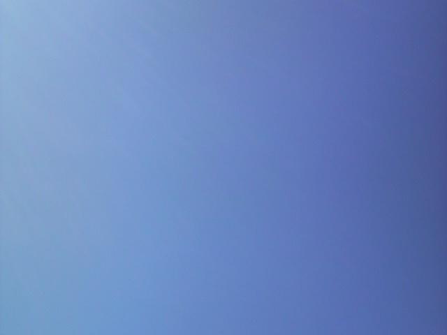 晴天でしたね_e0114246_13103774.jpg