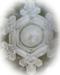 Kotodama (power of words) Vol.2 - 言霊 (ことばの力) Vol.2 -_f0186787_0475515.jpg