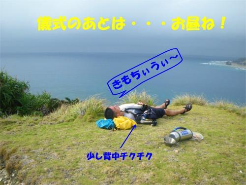 b0089616_19075.jpg