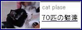 f0114416_22581233.jpg