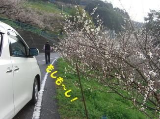 梅林へGO~_c0058727_20123521.jpg