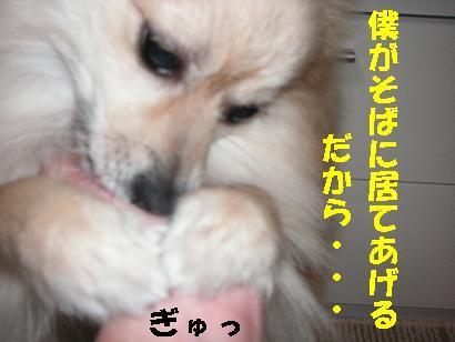 c0179136_3531848.jpg