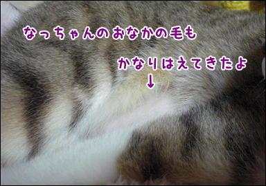 d0139352_0224874.jpg