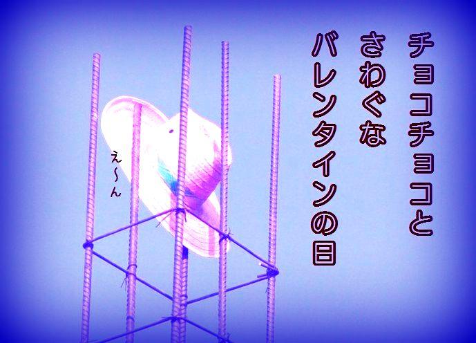 f0053297_137394.jpg