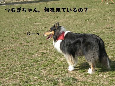 f0081100_2340189.jpg