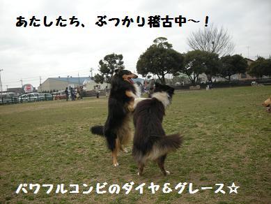 f0081100_2344769.jpg