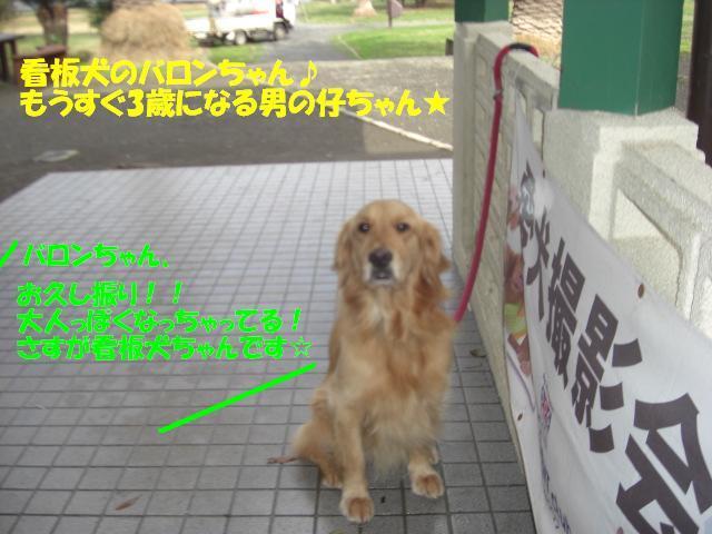 f0182121_842299.jpg