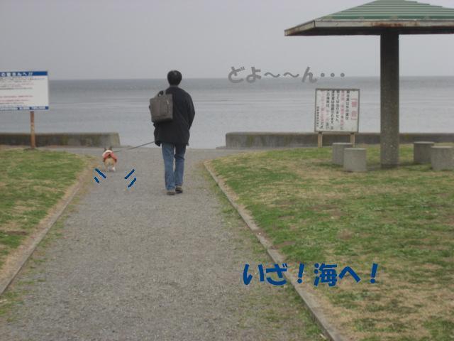 f0182121_846417.jpg