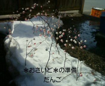 f0085327_1527491.jpg