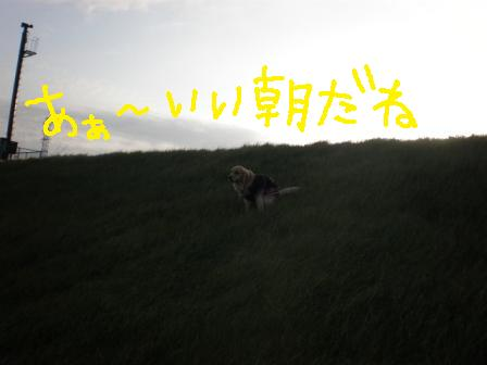 f0176830_10313567.jpg