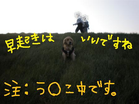 f0176830_10323693.jpg