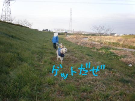 f0176830_1040470.jpg