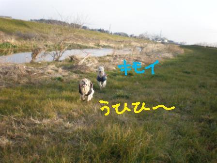 f0176830_10414196.jpg