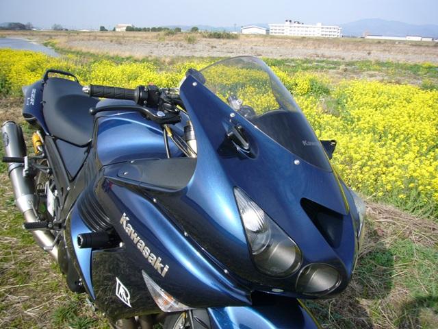 f0087741_19495793.jpg
