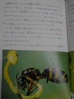 f0169942_98149.jpg