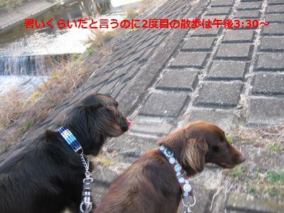 b0148945_22151265.jpg