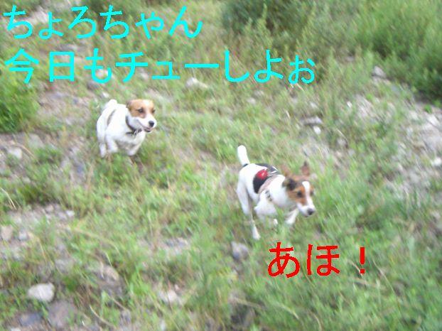 f0053952_12521357.jpg