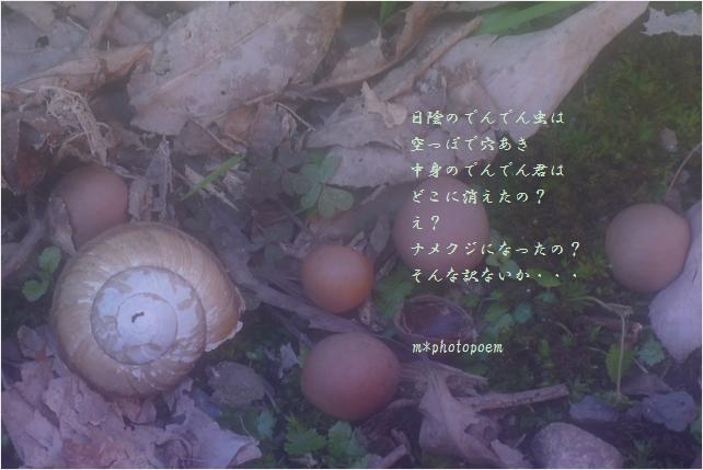 b0154475_2223480.jpg