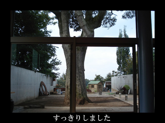 パサニアガーデンの大改造1 アフター編_d0096076_16273316.jpg
