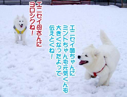 楽しかったサミー☆スマイル冬オフ_a0044521_2304510.jpg