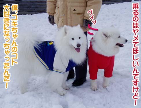 楽しかったサミー☆スマイル冬オフ_a0044521_23111086.jpg