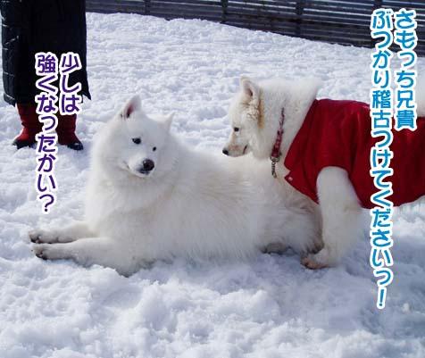 楽しかったサミー☆スマイル冬オフ_a0044521_2313785.jpg
