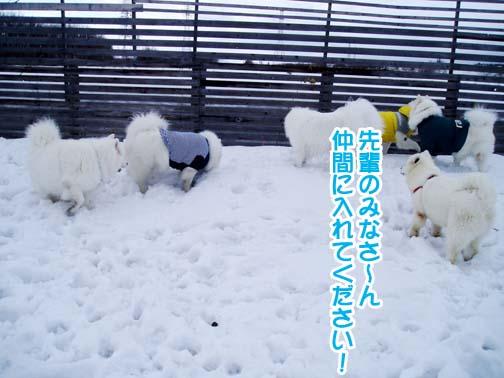 楽しかったサミー☆スマイル冬オフ_a0044521_231498.jpg