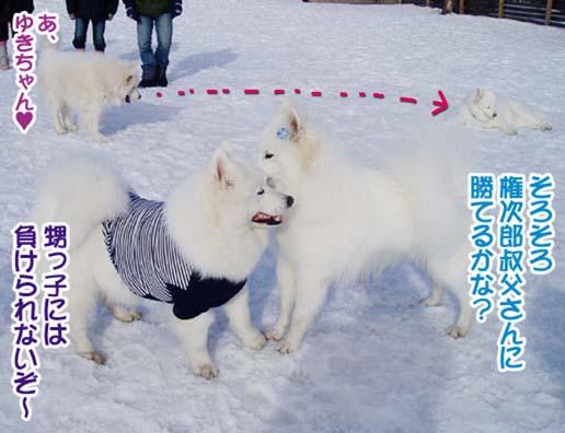 楽しかったサミー☆スマイル冬オフ_a0044521_23155060.jpg