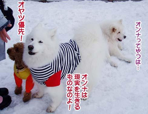 楽しかったサミー☆スマイル冬オフ_a0044521_23173336.jpg