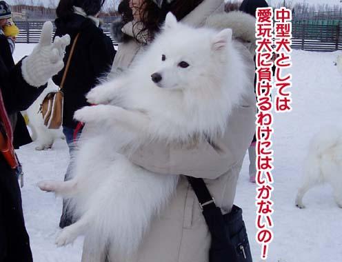 楽しかったサミー☆スマイル冬オフ_a0044521_23183145.jpg