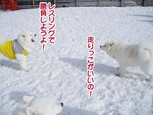 楽しかったサミー☆スマイル冬オフ_a0044521_23202394.jpg