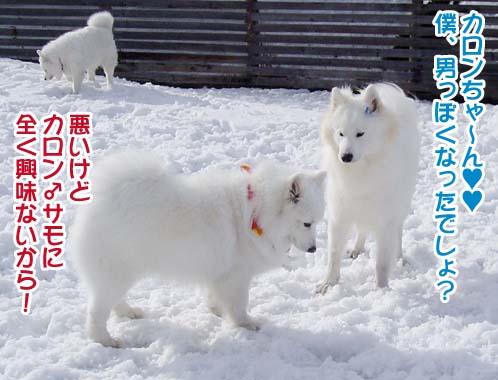 楽しかったサミー☆スマイル冬オフ_a0044521_23211659.jpg
