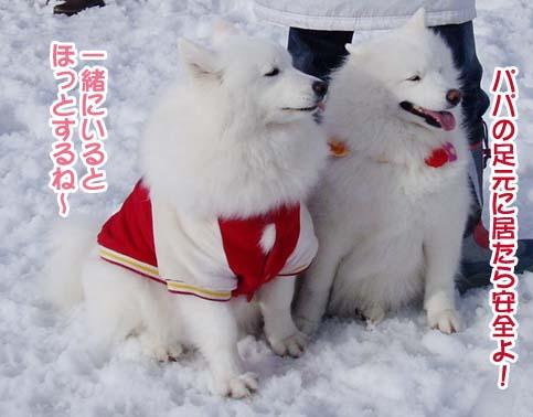 楽しかったサミー☆スマイル冬オフ_a0044521_2322326.jpg