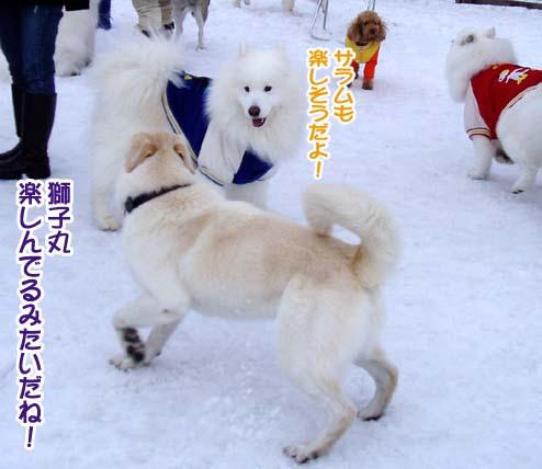 楽しかったサミー☆スマイル冬オフ_a0044521_23224037.jpg