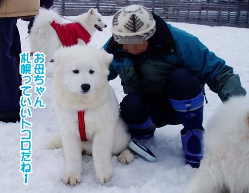 楽しかったサミー☆スマイル冬オフ_a0044521_232358.jpg