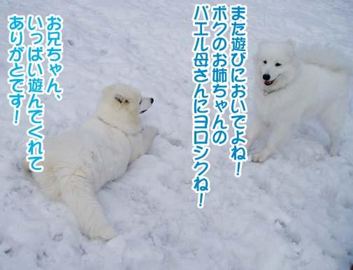 楽しかったサミー☆スマイル冬オフ_a0044521_2324478.jpg