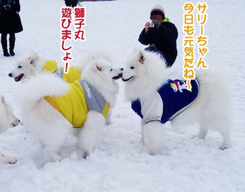 楽しかったサミー☆スマイル冬オフ_a0044521_23353889.jpg