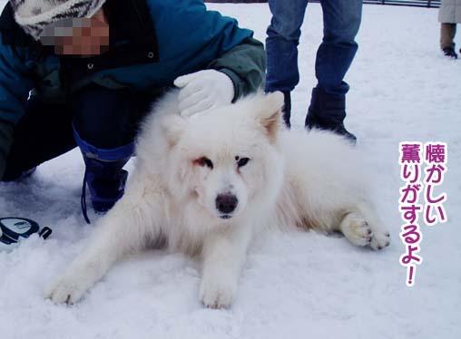 楽しかったサミー☆スマイル冬オフ_a0044521_234734.jpg