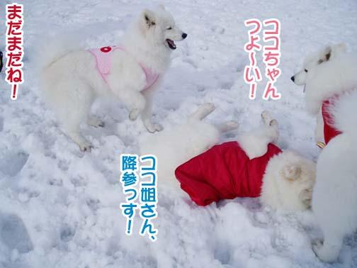 楽しかったサミー☆スマイル冬オフ_a0044521_2393875.jpg