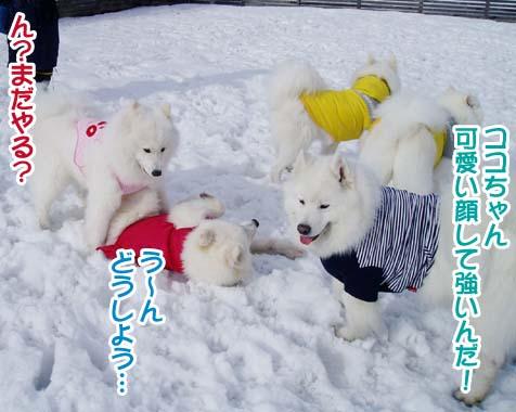 楽しかったサミー☆スマイル冬オフ_a0044521_2395548.jpg