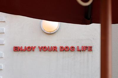 Dog Dept Garden @ Garden Island_e0166336_17585752.jpg