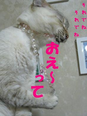 b0151748_12552012.jpg