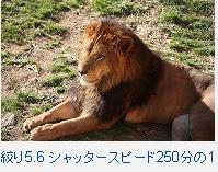 f0053757_1245363.jpg