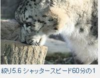 f0053757_23113897.jpg