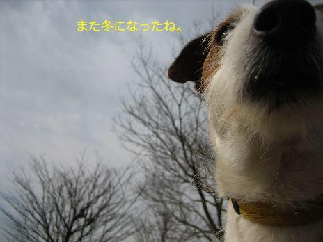 c0179472_16314624.jpg