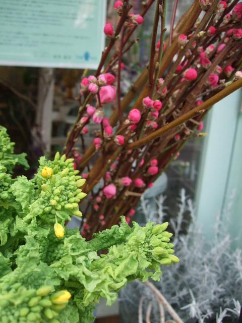 オークリーフ(桃と菜の花)_f0049672_13185044.jpg