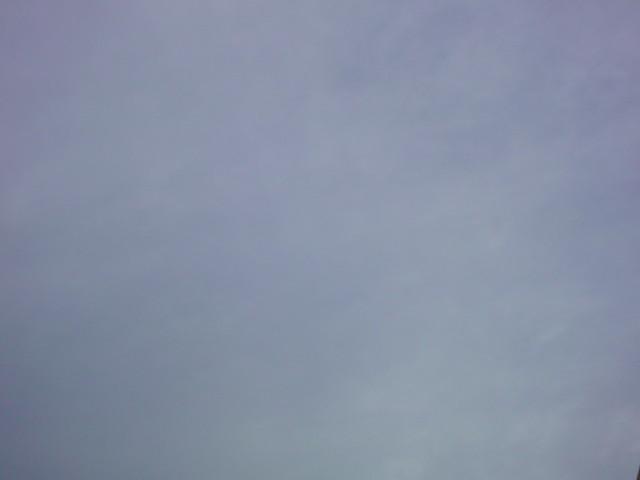 「今日は寒い朝…やはりまだ2月です…。」_e0051174_72784.jpg
