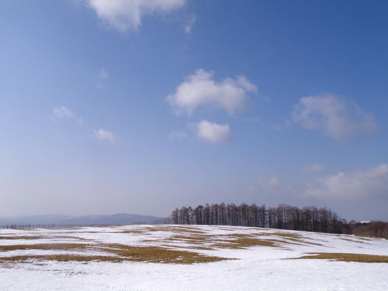 冬の荒川高原を歩く。。。_f0075075_2435681.jpg