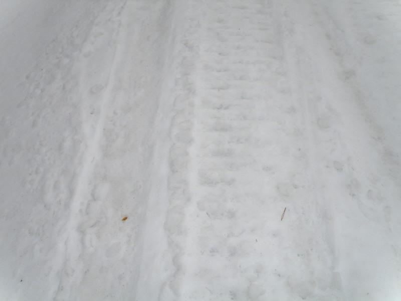 冬の荒川高原を歩く。。。_f0075075_2564566.jpg