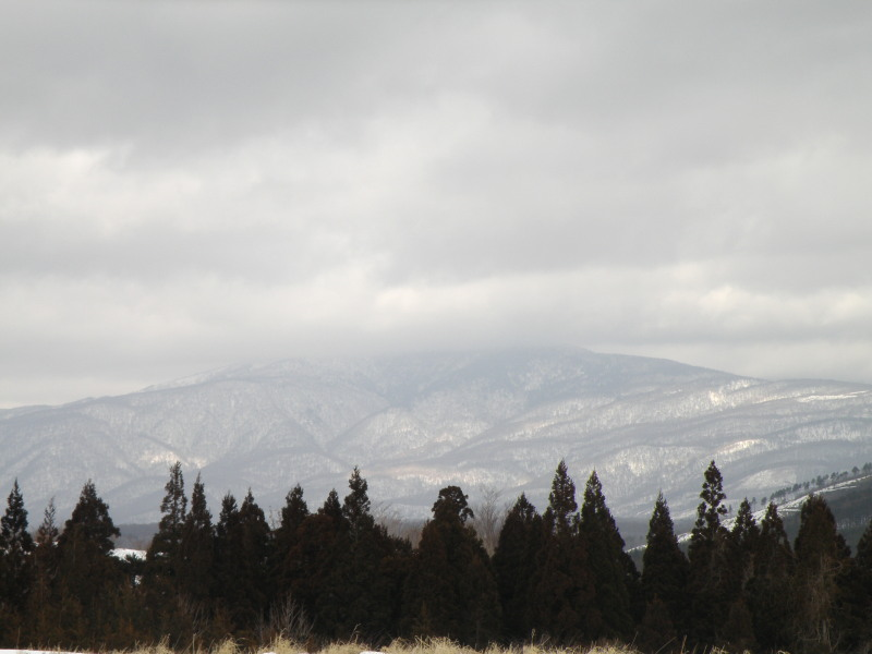 冬の荒川高原を歩く。。。_f0075075_30234.jpg